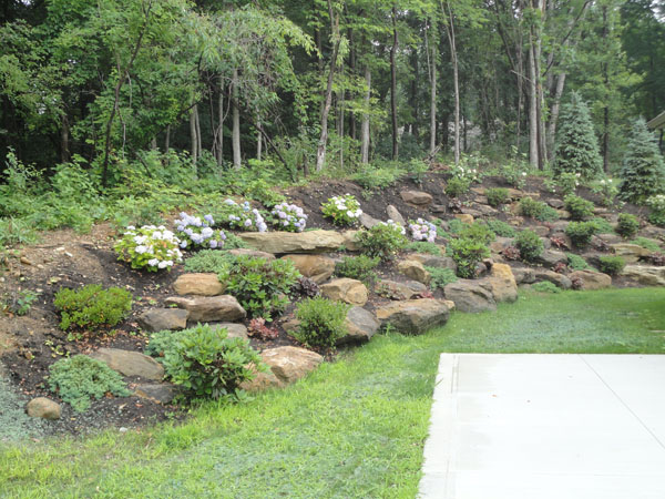 Hillside landscaping with rocks garden pinterest for Hillside rock garden designs