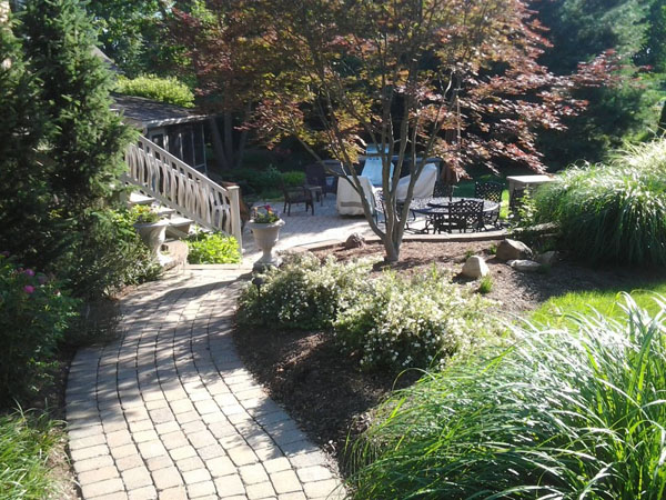 Matured Patio Landscaping