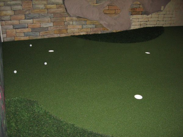 Putting Green In Basement