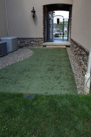 K9 Pet Grass Area